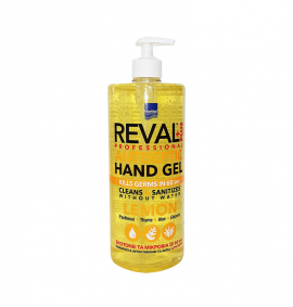 REVAL PROFFESIONAL PLUS ANTISEPTIC HAND …